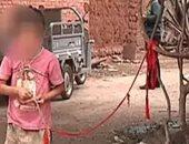 بالصور.. طفلة صينية تُربط فى شجرة لـ6 سنوات والسلطات تفشل فى تحريرها