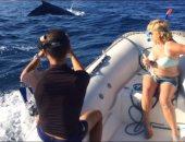 بالفيديو.. الحوت الأحدب العملاق يظهر لأول مرة فى شواطئ مرسى علم