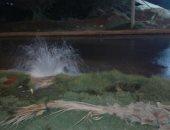 بالصور.. قارئ يرصد انفجار ماسورة مياه بالشيخ زايد