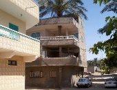 حفاظا على التراث السيناوى.. مواطن يرفض قطع نخلة لبناء منزله بالعريش
