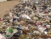 القمامة على جوانب شوارع قرية ميت اشنا فى الدقهلية والأهالى يتضررون