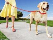 دراسة: تربية الكلاب تحفز على زيادة النشاط البدنى
