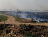 تحرير 980 محضراً وتنظيم 170 ندوة للتوعية بمخاطر حرق قش الأرز بكفر الشيخ