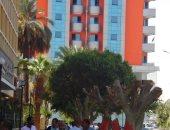 مذبحة أشجار أمام الوحدة المحلية بأسوان بعد محاولة سرقة بنك ناصر