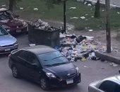 أهالى شارع الحجاز بمصر الجديدة يشتكون من القمامة والكلاب الضالة