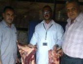 ضبط تاجرين يجمعان الماشية المريضة والنافقة لبيع لحومها بالأسواق فى الإسكندرية