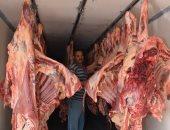 """""""شعبة القصابين"""" تطالب بمنع ذبح الماشية لـ3 شهور بعد ارتفاع الأسعار"""