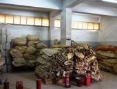 """""""تضامن أسوان"""" تعلن توفير 184 خيمة إيواء لاستقبال طوارئ السيول"""