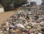 أهالى قرية ميت اشنا بالدقهلية يشتكون من انتشار القمامة