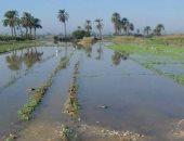 """قارئ يشارك بصور آثار السيول على الأراضى فى قرية """"ساقلتة"""" بسوهاج"""