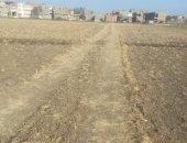 بالصور.. استغاثة بوزير الزراعة لوقف تبوير أراضى قرية بشبيش بالغربية