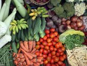 الزراعة: لجان بغيطان الخضر الصيفية لزيادة الإنتاج ومواجهة المناخ المتغير
