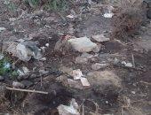 بالصور.. قارئ يشكو تراكم القمامة بمحيط المدارس فى دمياط