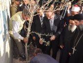 محافظ بنى سويف يدشن حملة لزراعة 3 ملايين شجرة زيتون