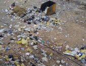 """معاناة سكان """"نزلة عبد اللاه"""" فى أسيوط مع الناموس والكلاب بسبب القمامة"""
