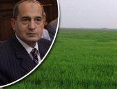 الزارعة: الكويت طلبت شهادة لمحصول الفراولة.. وصدرنا لهم 3 آلاف طن فى شهر