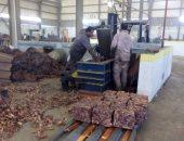 مصادرة 675,060 طن أقماح ودقيق مدعم و300 بطاقة تموينية