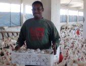 3.9 مليون رأس طائر محصنة ضد انفلونزا الطيور × 30 يوم