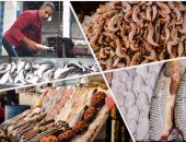 أسعار السمك اليوم الجمعة 13-9-2019 بسوق العبور