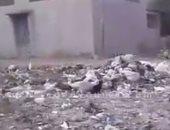 بالفيديو.. أهالى قرية الراهبين بالغربية يشكون من تراكم القمامة