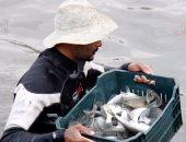 ضبط 1.5 طن أسماك مهربة فى حملة على بحيرة السد العالى بأسوان