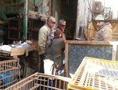 """""""بيطرى"""" بورسعيد تطلق حملة توعية لبائعى ومشترى الطيور المهاجرة"""