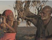 """تعرف على برنامج """"نادى السينما الأفريقية"""" والنجوم المدعوين لافتتاحه"""