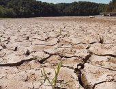 رويترز: الجفاف يدمر محاصيل فى جنوب أوروبا فى واحدة من أسوأ موجاته منذ عقود