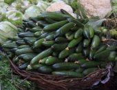 شعبة الخضراوات: انخفاض الأسعار من 15 إلى 20 % بسبب زيادة المعروض