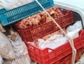 ضبط 140 كليو وجبات فاسدة ولحوم و1000 لتر سولار بالعاشر من رمضان بالشرقية
