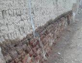 بالصور.. رشح للمياه الجوفية والمجارى بجدران منازل عزبة هارون بقنا