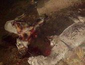 ضبط 4 أشخاص أثناء ذبحهم حمارين وسلخ جلودهما لبيعها بدمياط
