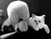 الآن يمكنك شراء قطة كارل لاجرفيلد الشهيرة بـ 538 دولار