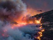 بالصور.. إعلان الطوارئ بنيوزيلندا بسبب حرائق الغابات.. والنيران تلتهم آلاف الأفدنة