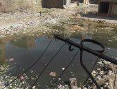 برك مياه المجارى تحاصر أهالى شارع المدينة المنورة بالمرج الجديدة