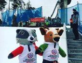 نجوم الفن ضيوف حفل افتتاح الألعاب الشتوية للأولمبياد الخاص بالنمسا