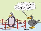 البط المصرى ينافس البطريق فى التزلج على الجليد.. فى كاريكاتير اليوم السابع