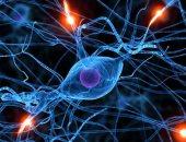 علماء يطورون آلية جديدة لتفعيل الخلايا الجذعية لزراعة الشعر