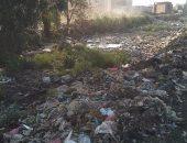 """بالصور.. القمامة فى """"كفر فيالة"""" بالغربية تتسبب فى انسداد مواسير الصرف الصحى"""