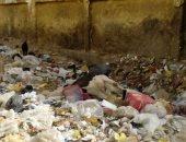 بالصور.. تلال القمامة والحيوانات النافقة تهدد صحة تلاميذ مدرسة بأسوان