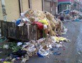 زبالة فى حى البشوات.. أستاذ جامعى يرصد انتشار القمامة فى شوارع مصر الجديدة