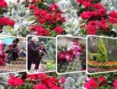 """""""آدى الربيع عاد من تانى"""".. افتتاح معرض الزهور بحديقة الأورمان"""