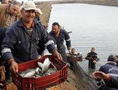"""نائب برلمانى يطالب """"مميش"""" بزيادة نسبة السويس من شركة المزارع السمكية"""
