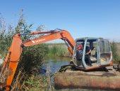 الدولة تتحرك لتطهير وتطوير 60 ألف فدان ببحيرة المنزلة بعد إزالة التعديات