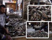 أسعار الأسماك تشهد انخفاضا اليوم الثلاثاء بسوق العبور والبلطي بـ32 جنيها