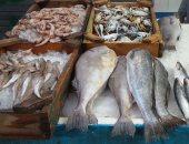 """""""البلطى"""" بـ30.. """"مجمعات الإسكندرية"""" تطرح 7 أطنان سمك يوميًا بأسعار مخفضة"""