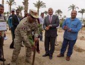 سكرتير عام محافظة جنوب سيناء  يزرع أشجار مانجو بحديقة الشهداء