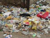 بالفيديو والصور.. أكوام القمامة تنتشر داخل مدينة أسوان