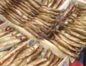 غلق 13 منشأة تعمل بدون تراخيص وإعدام أسماك مملحة فاسدة بالإسكندرية