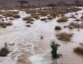 """""""الغذاء العالمى"""": 10 ملايين شخص تضرروا من الفيضانات فى إيران"""